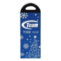 TEAM 16 GB T123 Blue Xmas