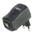 Ansmann Dual USB Charger