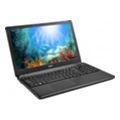 Acer Aspire E1-532-35562G50Mnkk (NX.MFVEU.009)