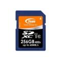 TEAM 256 GB SDXC UHS-I TSDXC256GUHS01