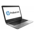 HP ProBook 655 G1 (F1N82EA)