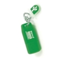 GoodRAM 4 GB Fresh Mint PD4GH2GRFMNR