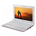 Samsung N100S (NP-N100S-N06RU)